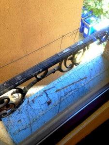 Ara nettoyage - copropriété immeuble Pic anti pigeon, et barrière