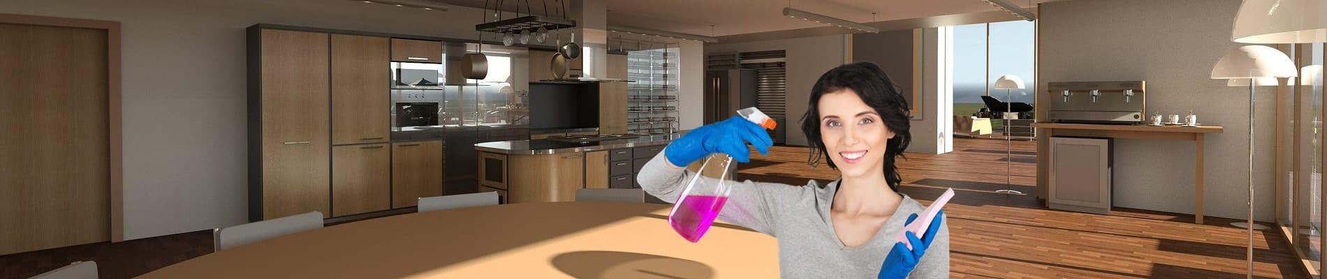 Nettoyege entreprises